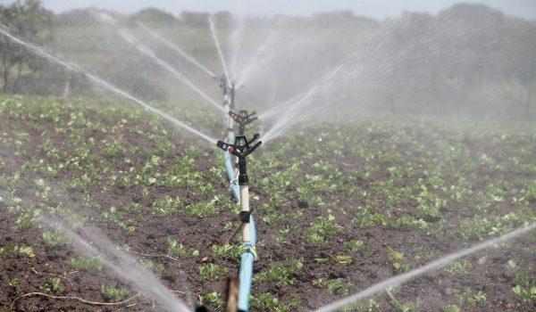 Waterput boren grondwaterput